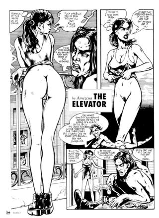 The Elevator by Amezcua