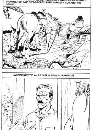 Cowgirl Blues by Barroso
