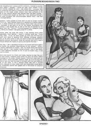 Pleasure Bound 2 by Eric Stanton