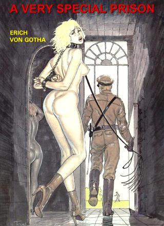 A Very Special Prison by Erich von Gotha