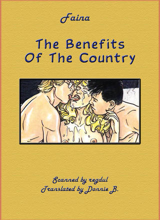 The Benefits Of The Country van Fabrizio Faina