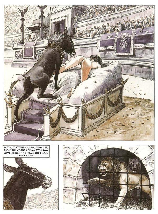 The golden ass by milo madara