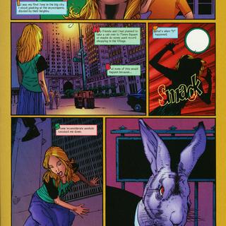 Alice a Fractured Fairytale by Allen Jeffries, Tom Coker