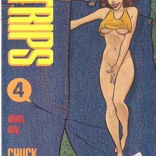 Strips 4 by Chuck Austen