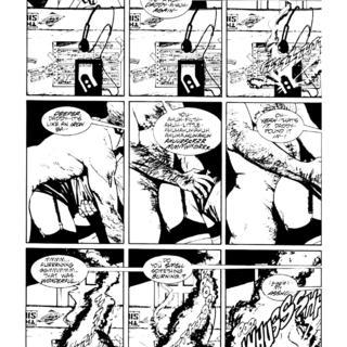 Black Kiss 1 by Howard Chaykin