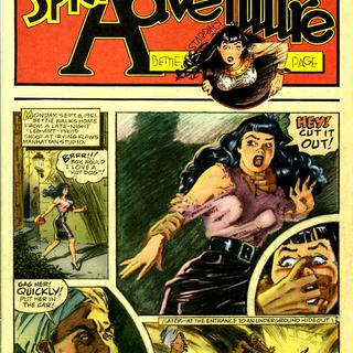 Spice Adventure of Bettie Page by Jim Silke