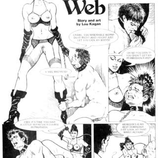 Cassandra's Web by Lou Kagan