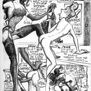 The Trapdoor Spiderwoman in Rear Factor by Roger Wormburper