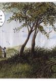 Botanical excursion by Horacio Altuna
